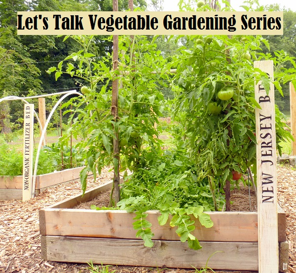 Lets Talk Vegetable Gardening Series